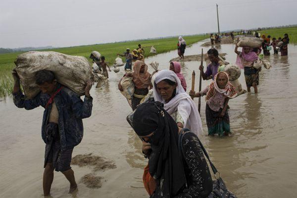 目前已有50多万罗兴亚人逃到孟加拉国。(联合国儿基会/Brown)