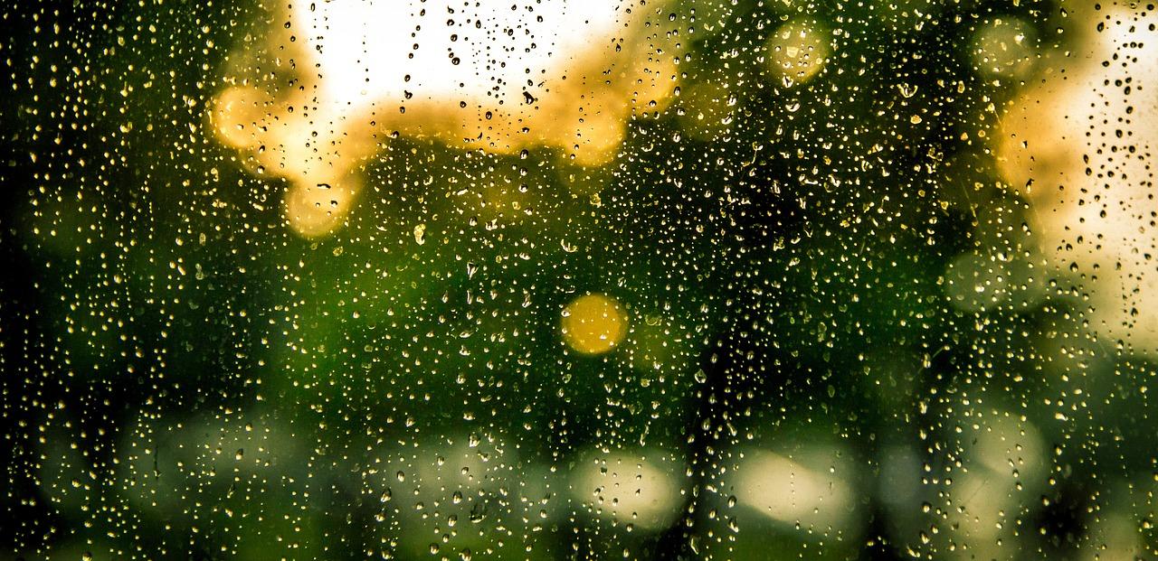 雨(pixabay)