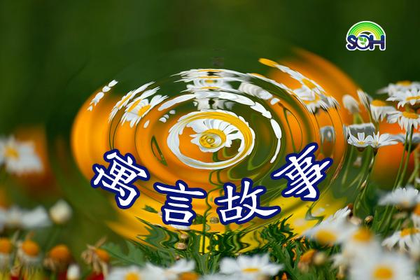 【寓言故事】手捧空花盆的孩子