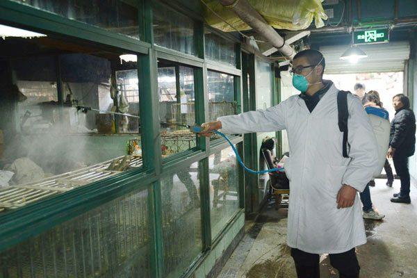 陆H7N9骤增百例 往来两岸当心
