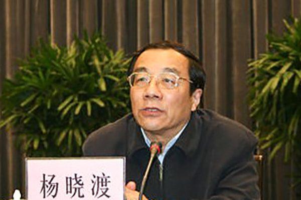 杨晓渡(网络图片)