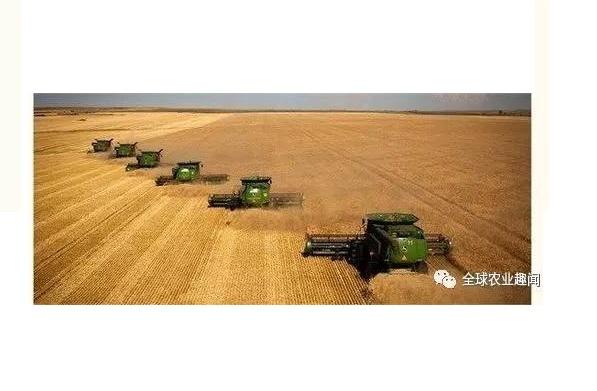 中国农业之痛 (一)