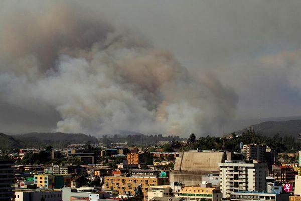 智利史上最严重林火肆虐 全国进入紧急状态