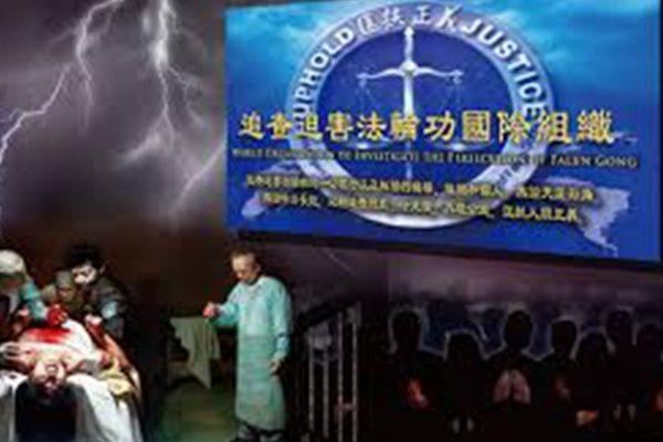 「追查国际」吁梵蒂冈禁中共活摘器官医生出席峰会