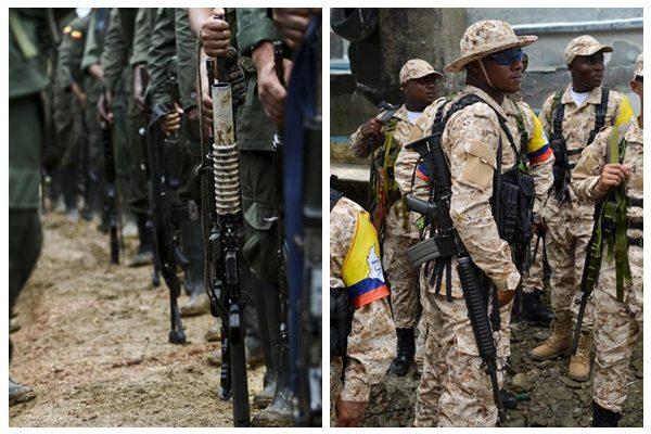 哥国最大叛军三月内全部解除武装 成员还原平民生活