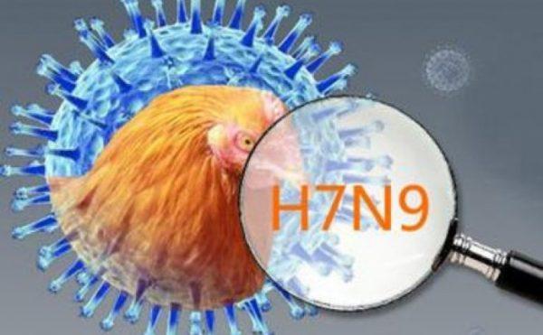 H7N9病毒新发变异 广西通报两例死亡病例