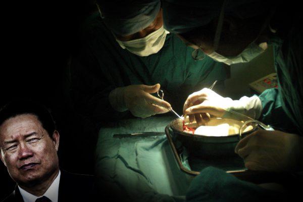 难以掩盖的罪行:器官移植专家论文遭撤 再爆中共破绽