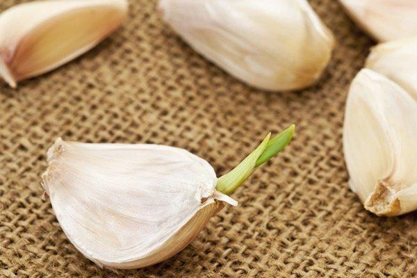 发芽的食物毒似砒霜?发芽土豆绝对不能吃,但其他蔬菜呢