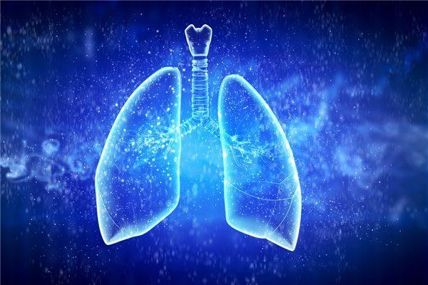 《自然》颠覆发现:肺竟然是个造血器官!