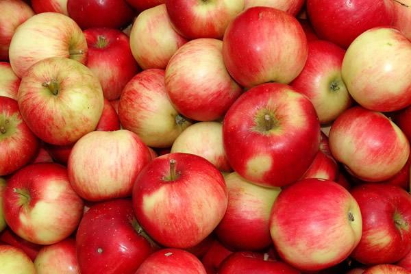 苹果(图片:Pixabay)