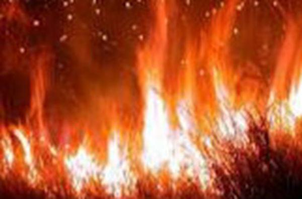 内蒙那吉林场森林火灾 两天未灭