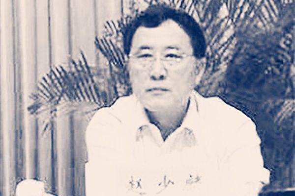 """后台老板或是江泽民亲家 """"赵衙内""""之父被轻判4年"""