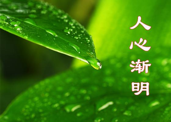 人心渐明(网络照片)