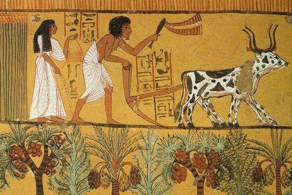 埃及人(图片来源:网路)
