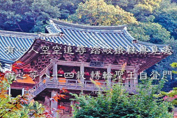 韩国老僧一生的等待和追寻