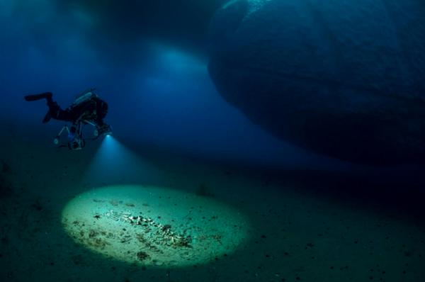 60多米的水下光线暗淡,温度为零下1.6摄氏度左右