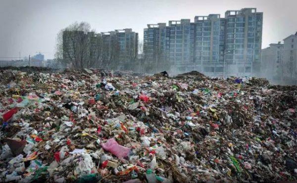 """据工作人员介绍:""""塑料中应用极广的塑化剂,是一种很严重的污染物。不仅对环境来说,塑化剂对人体健康的危害更让人揪心。"""
