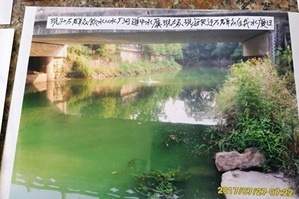 浙湖州一公司病死猪埋山贪污处理款造成污染