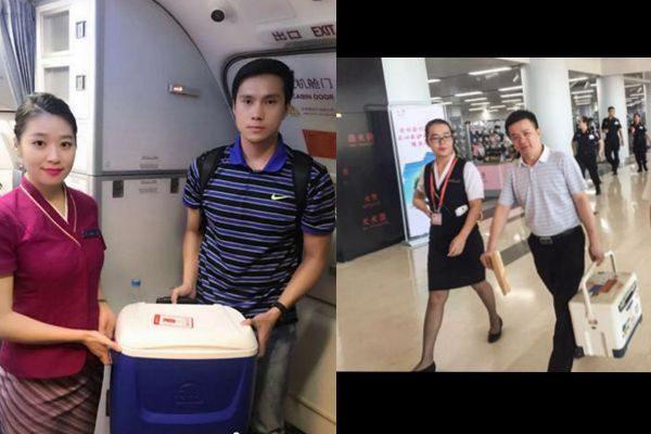 中国南方航空公司配合南方医科大学转运2例人体活体器官的报导