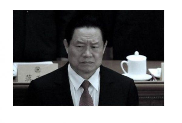 """刘士余在十九大上提及周永康""""篡党夺权阴谋"""""""