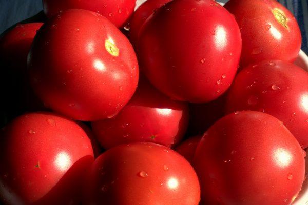 西红柿改善口臭防辐射(资料图片:pixabay)