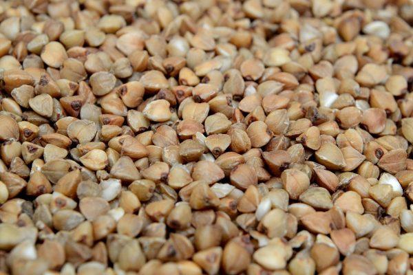 荞麦 (图片来源 pixabay)