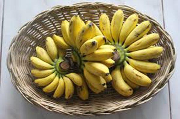 香蕉是我们所熟知的含钾量比较丰富的水果 (图片来源:pixabay)