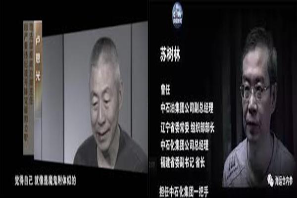 """苏树林卢恩光被公诉 罕见罪名是多名""""巨虎""""落马前奏?"""