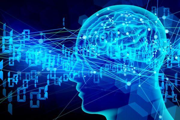 新研究:大脑结构有多达十一个维度