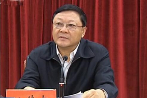 深圳市委书记王伟中(视频截图)