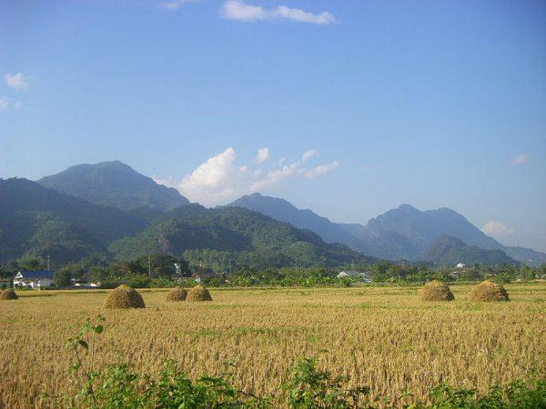 泰国北部美塞县的国家森林公园(图片:wikimedia commons/Doi Nang Non,CC BY-SA 3.0)