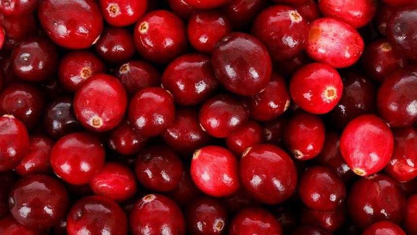 蔓越莓(pixabay)