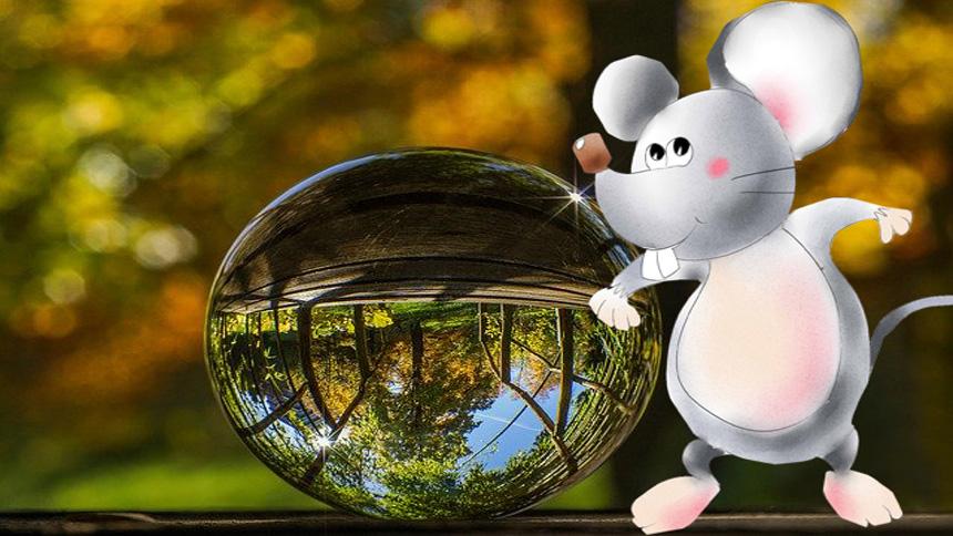 老鼠預測死亡的靈異事件