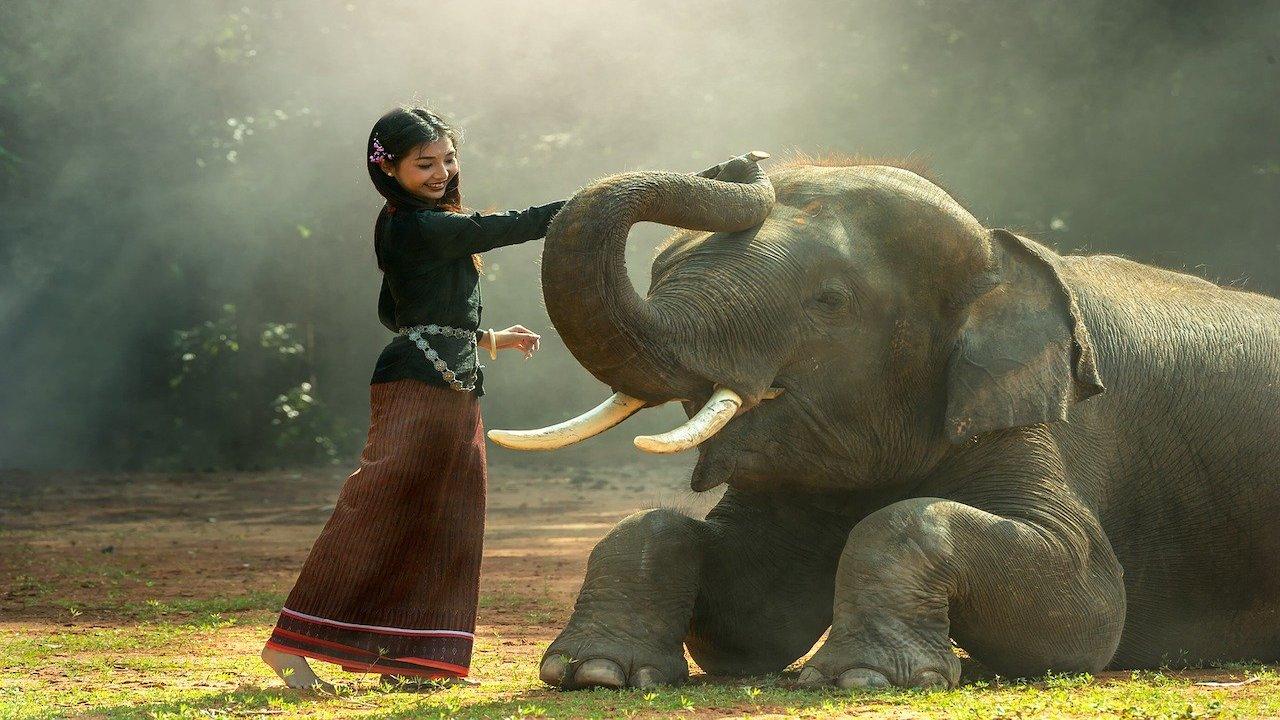 民风淳朴的佛国  有着公认的世界七大奇景之一