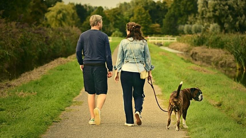 散步(图片:pixabay)