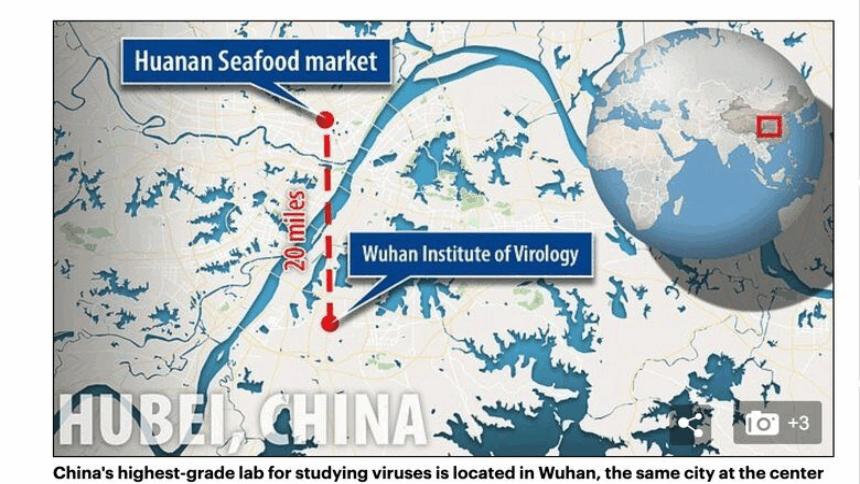 研究高风险病毒的武汉国家生物安全实验室,距离被中共称为病毒源头的华南海鲜市场20英哩(英国每日邮报报导截图)