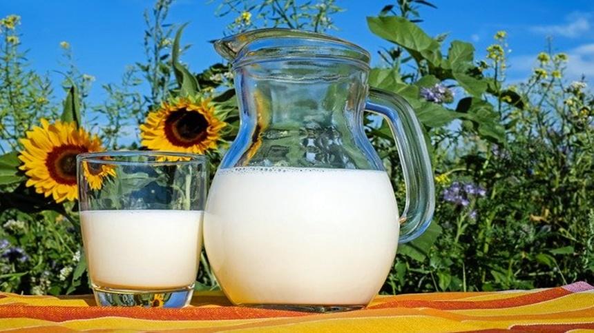 牛奶(图片:pixabay)