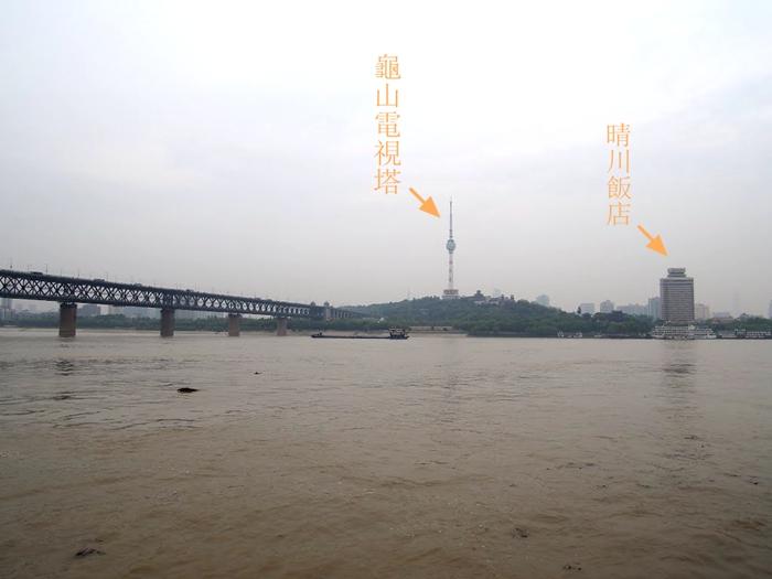 武汉长江大桥与龟山(图片:Chen Huang/web.archive.org-希望之声合成)