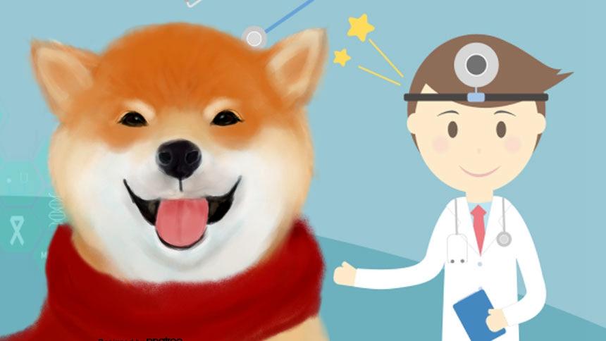 狗狗有望透过嗅觉侦测出新冠病毒疾病,目前正展开训练  (希望之声合成)