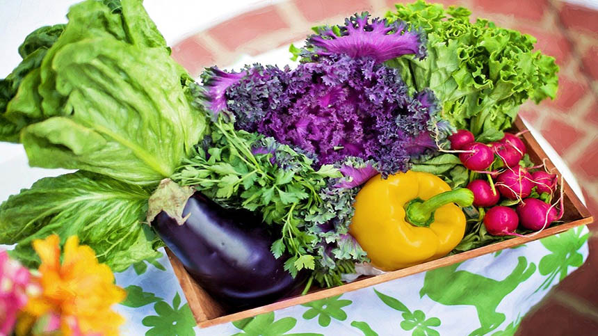 有機蔬菜(pixabay)