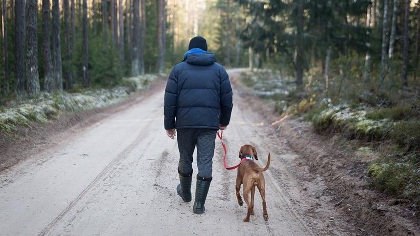 主人和狗(pixabay)