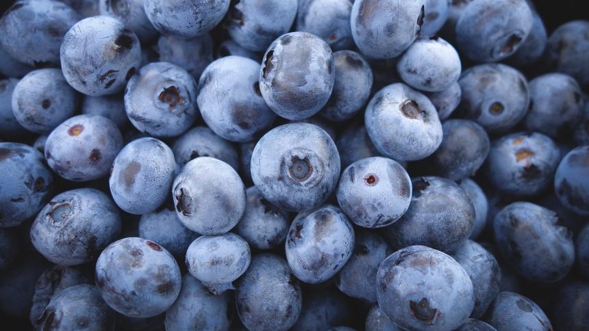 蓝莓 (pixabay)