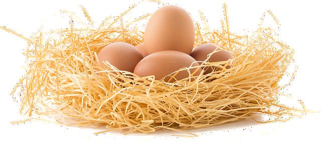 蛋(pixabay)