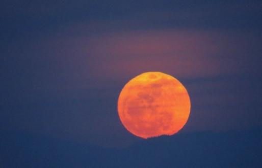 """罕见天文现象""""草莓月亮""""现身欧美"""
