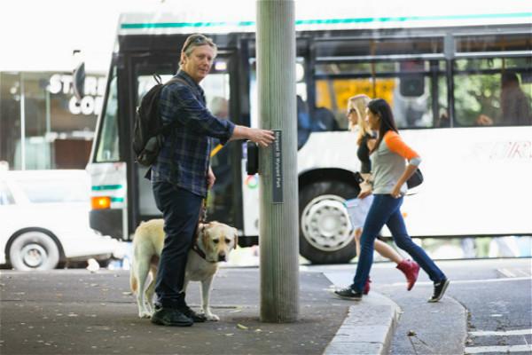 全球最大导盲路标系统在悉尼