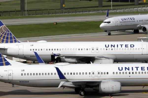 美联合航空客机遭鸟袭 紧急迫降悉尼